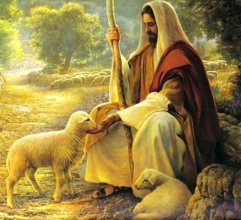 Lamb_God