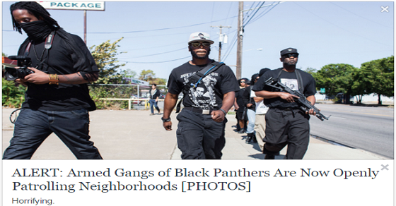 black panthers guns